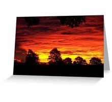 Mata Mata Sunset Greeting Card