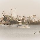 Shrimp Boat  by Jonicool