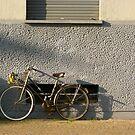 Ombre à deux roues by Dominique MEYNIER