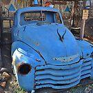 Ol' Billy blue by Karen01