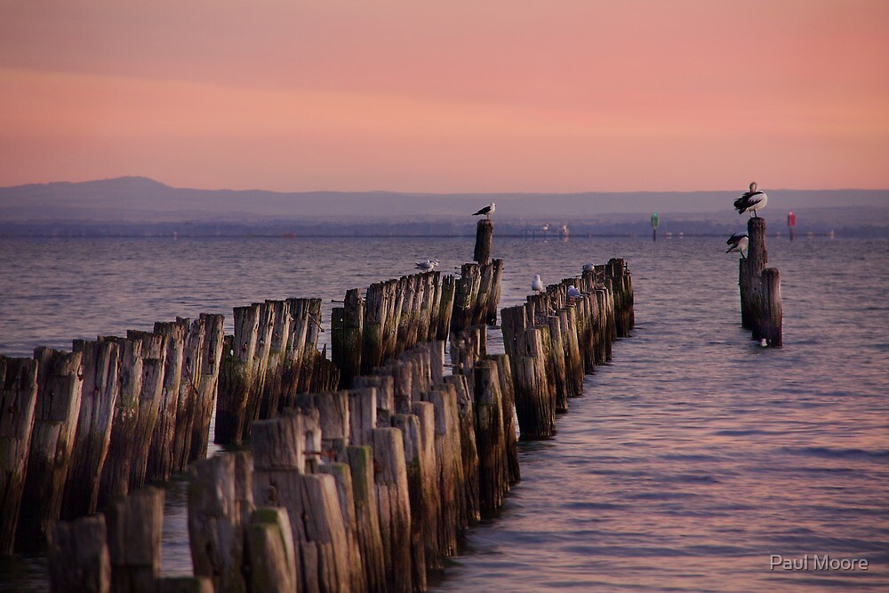 At the end of the jetty by Paul Moore
