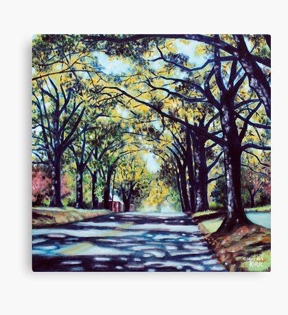 'Morehead Street' Canvas Print