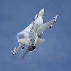 F18 Super Hornet by PhilEAF92