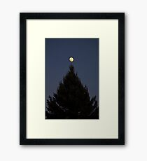 Tree Topper Framed Print