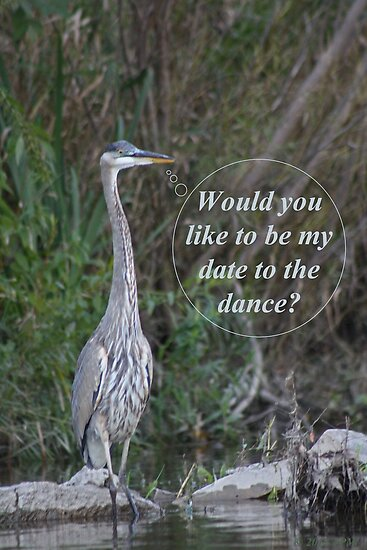 Would you like to be my date for the dance. by Thomas Murphy