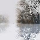 apres moi... by Nikolay Semyonov