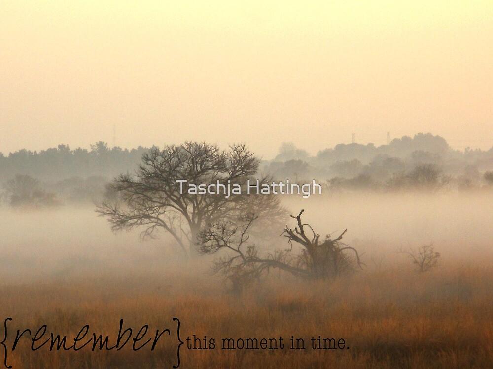 Sunrise by Taschja Hattingh