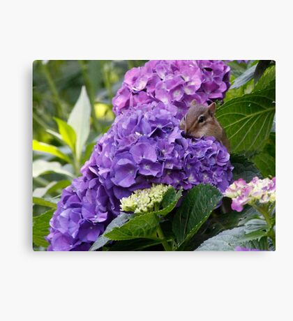Smelling the flowers Canvas Print