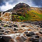 Tea Tree Falls Lower by Sam Sneddon