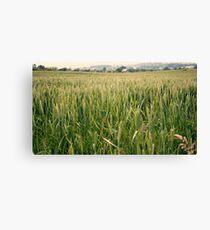 Crop Canvas Print
