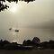 Mist along our shores QUICK CHALLENGE