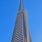 The San Francisco Trans America Building by the57man