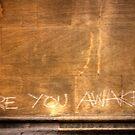 Are you awake? by Elana Bailey