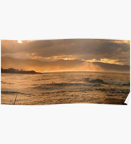 winter swell, redbill. bicheno, tasmania Poster