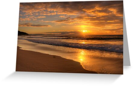 Daydream Believer - Whale Beach,Sydney - The HDR Experience by Philip Johnson