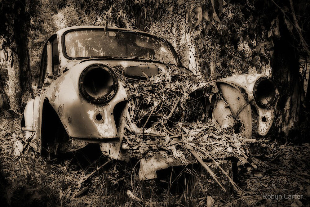 My Old Car by Robyn Carter