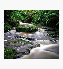 Leura Creek Allure Photographic Print