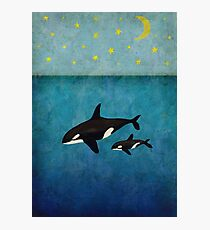 Whales at night Photographic Print