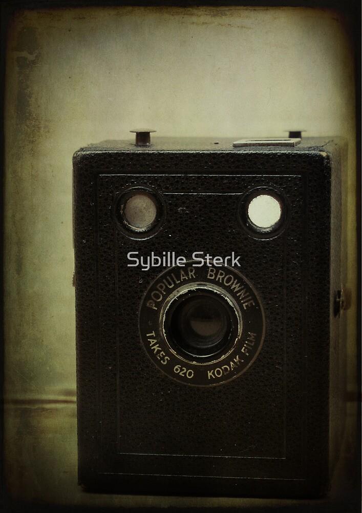 Popular Brownie 620 by Sybille Sterk