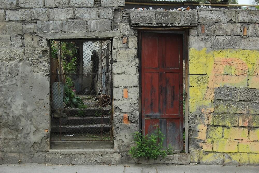 Wood Door and Steel Gate by rhamm