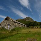 Old stone barn  by Joyce Knorz