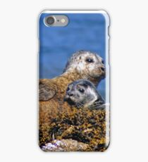 Seal and pup iPhone Case/Skin