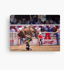 Very Bad Tumble Canvas Print