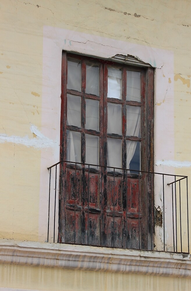 Weathered Red Door on a Balcony by rhamm