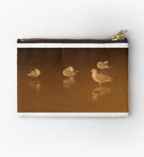 Roosting Gulls Studio Pouch