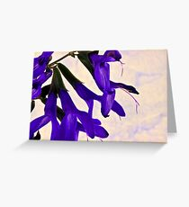 Blue Angel Sage Macro  Greeting Card