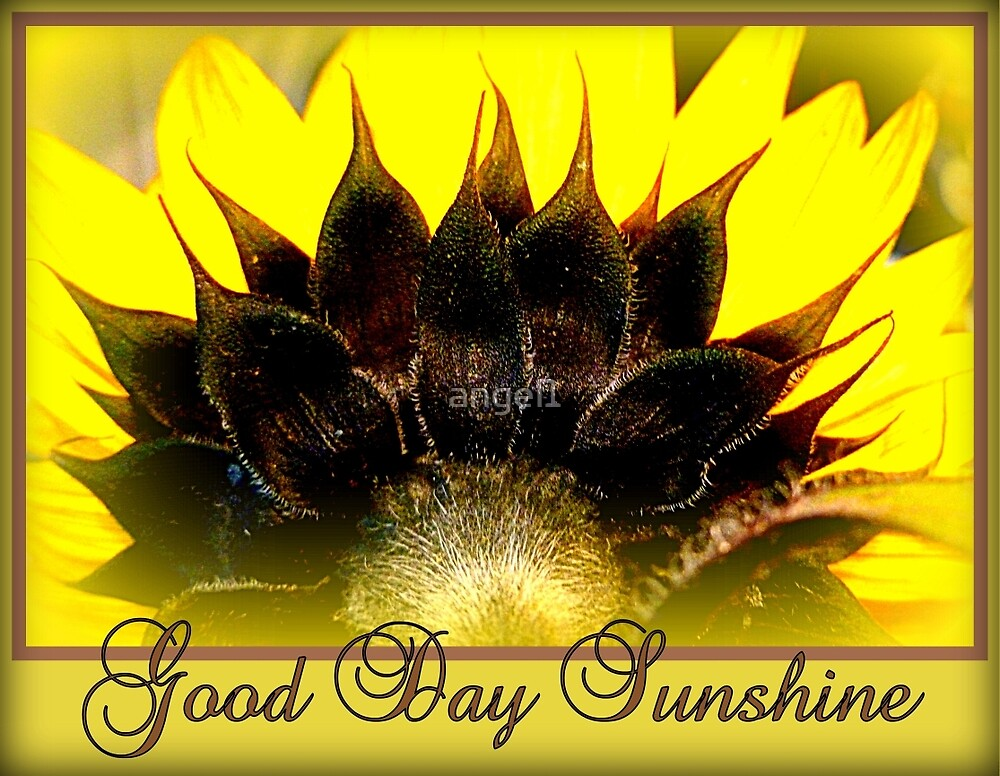 Good Day Sunshine by ©The Creative  Minds