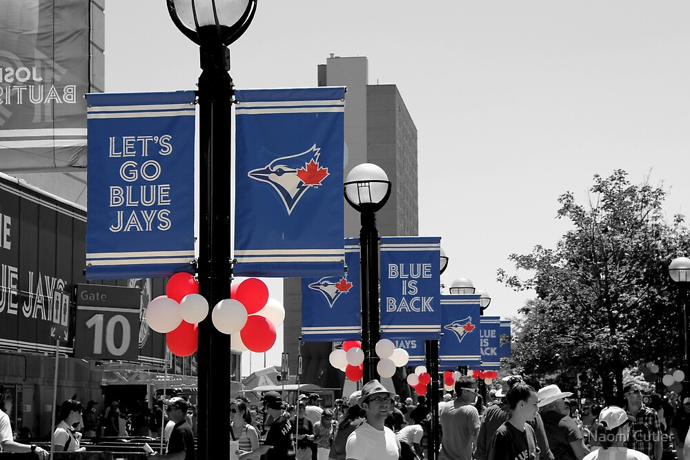 Let's Go Blue Jays by Naomi Cutler