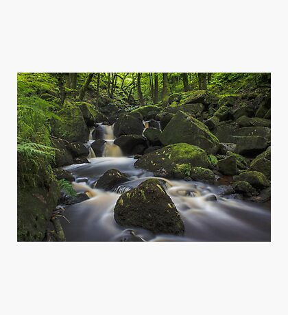 Padley Gorge Photographic Print