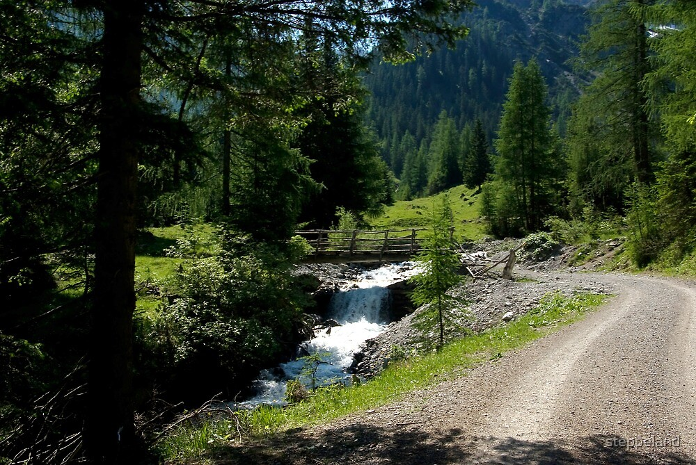 Path along the mountain stream by steppeland