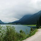 Quiet walk along the lake... Panorama by steppeland