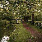 Canal at Rheola by Tsitra