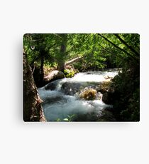Come And Cool Off Canvas Print