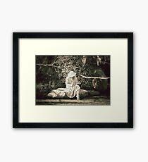 Lonely.... Framed Print