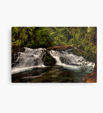 LET THE FLOW BEGIN Metal Print