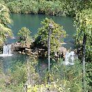 Indarri Falls, Lawn Hill National Park, Queensland by Adrian Paul