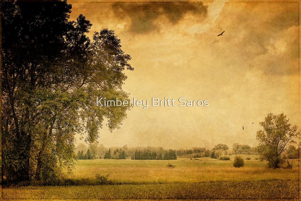 Prairie Field by KBritt