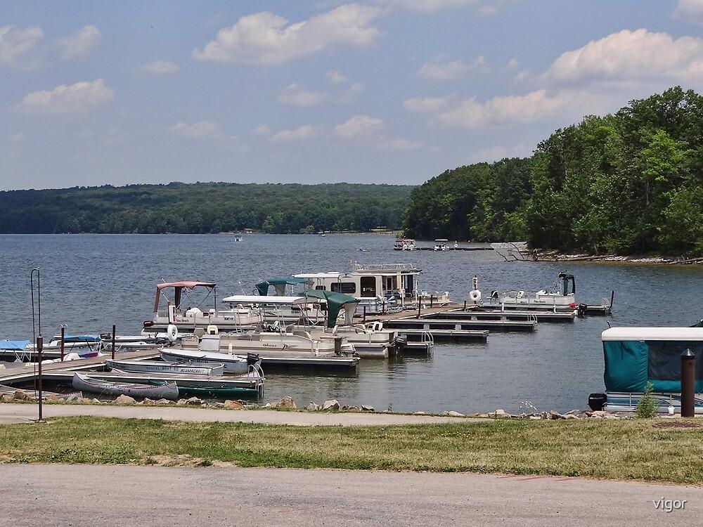 Boats at the Marina by vigor