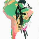 Animal Atlas - South American Bird Vegetation by Alexcarletti