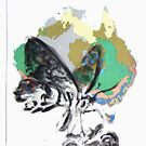 Animal Atlas- Australian Butterfly Agriculture by Alexcarletti