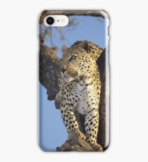 On the look out iPhone Case/Skin