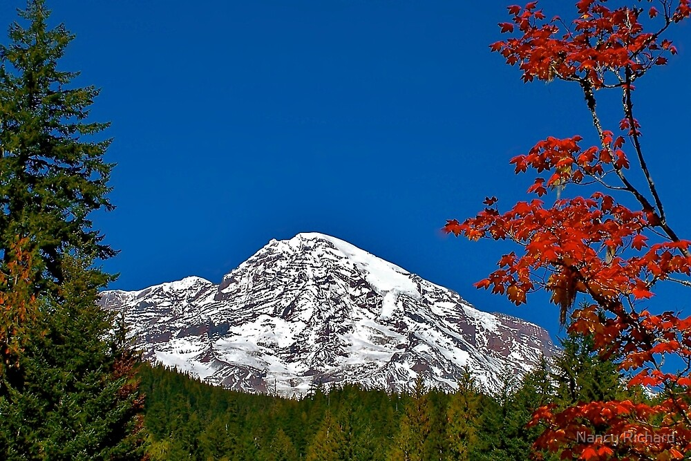 Fall Glory at Mt. Rainier by Nancy Richard