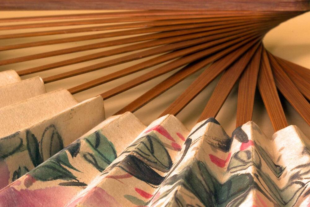 The Paper Fan by Lynn Gedeon
