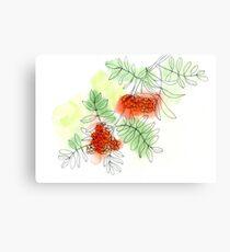 Rowan berry Canvas Print