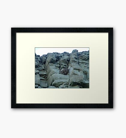 EAGLES NEST AND CLIFF SWALLOW DWELLINGS - BIG TIMBER, MT Framed Print