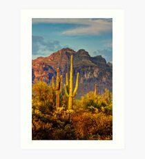 The Desert Golden Hour II  Art Print